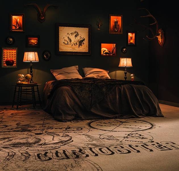 Collection Duo 4 moquette curiosites ambiance