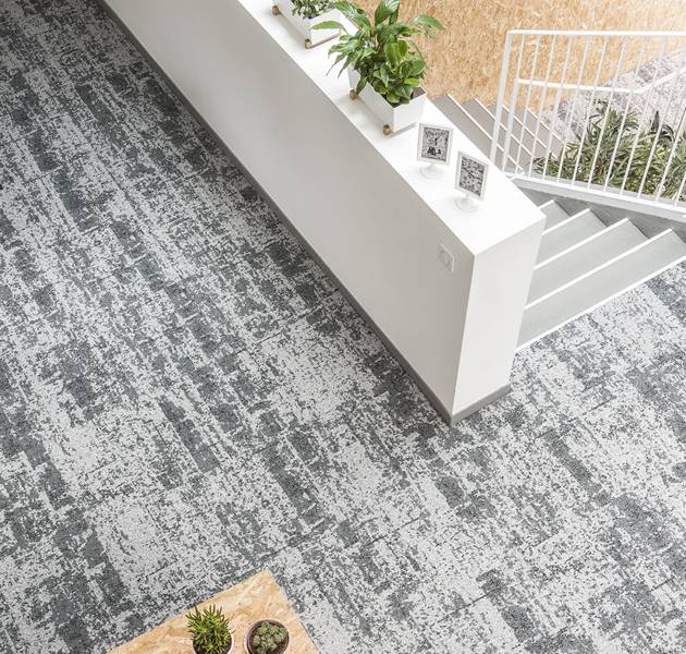 Collection macro micro canopy to bark moquette vision ambiance