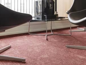 moquette canyon moquette anti feu balsan fr. Black Bedroom Furniture Sets. Home Design Ideas